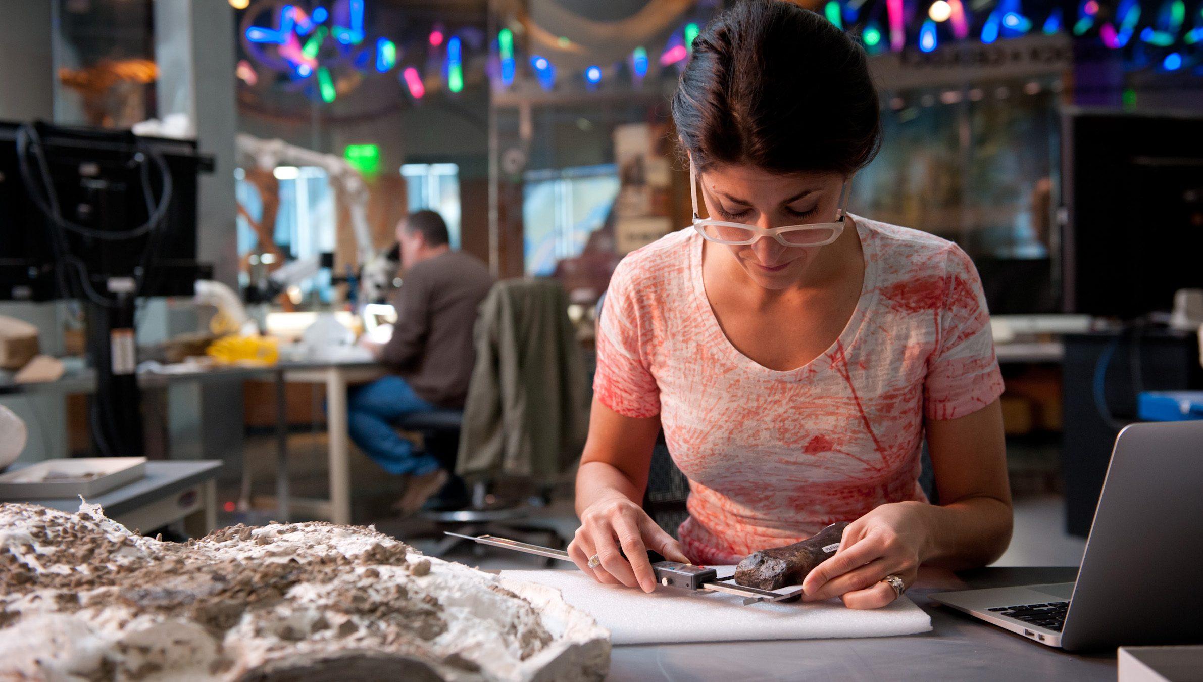 Lindsay Zanno in paleontology lab