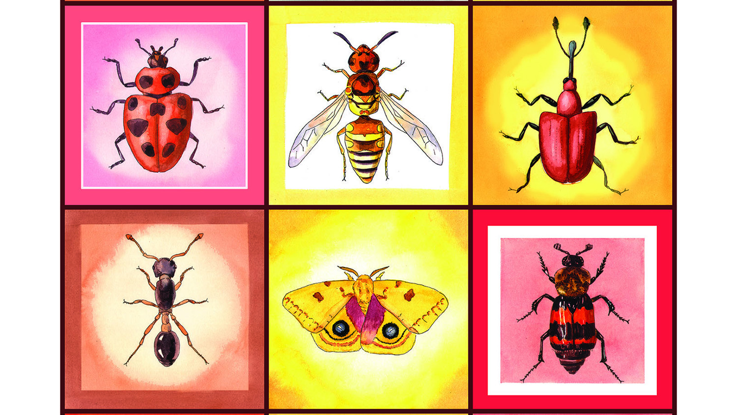 painting of insects